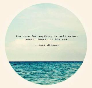 0a8c5e7b17d5561c49603cec0e76ec51--mermaid-quotes-ocean-life